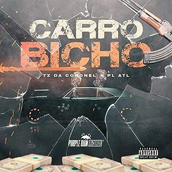 Carro Bicho
