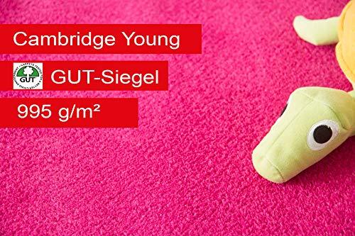 Steffensmeier Teppichboden Cambridge Young Meterware | Auslegware für Kinderzimmer Wohnzimmer Schlafzimmer | Pink, Größe: 400x300 cm