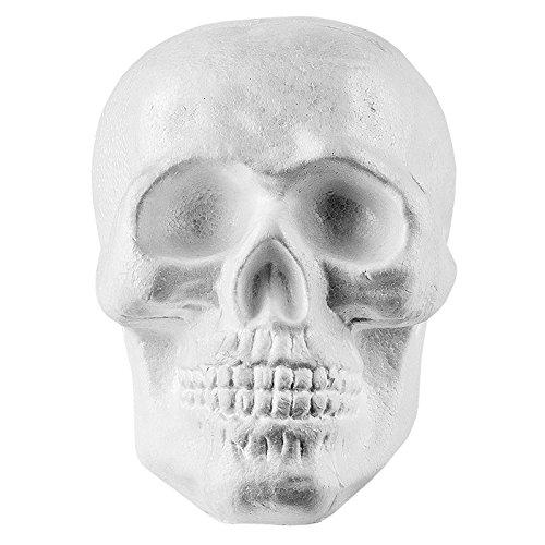 Tête de mort en polystyrène - 20 cm x 19 cm - Décoration gothique pour Halloween