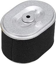 Amazon.es: filtro aire honda gx160