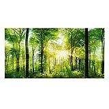 Fondo verde bosque reptil HD de papel pintado efecto 3D adhesivo para decoración de pared para acuario (122 x 50 cm)