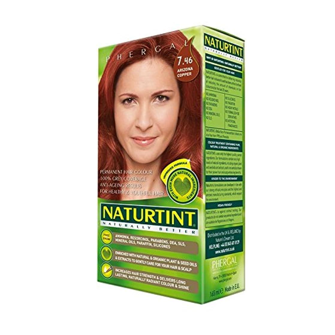 ぬるい作ります漁師Naturtint Permanent Hair Colour 7.46 Arizona Copper (Pack of 6) - Naturtintパーマネントヘアカラー7.46アリゾナ銅 (x6) [並行輸入品]