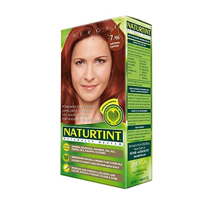 スペクトラム非常に怒っていますレーダーNaturtint Permanent Hair Colour 7.46 Arizona Copper (Pack of 2) - Naturtintパーマネントヘアカラー7.46アリゾナ銅 (x2) [並行輸入品]