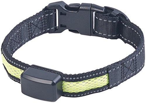 infactory Halsband: LED-Leuchtband, kinetische Leucht-Funktion, für kleine Hunde & Katzen (LED Hundehalsband)