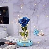 Camiseta de rosa Encantada La Bella y la Bestia, rosa eterna, flor eterna bajo campana con guirnalda de luces LED, tarjeta de felicitación (azul)
