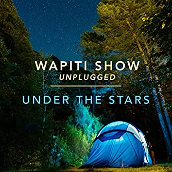 Under the Stars (Unplugged)
