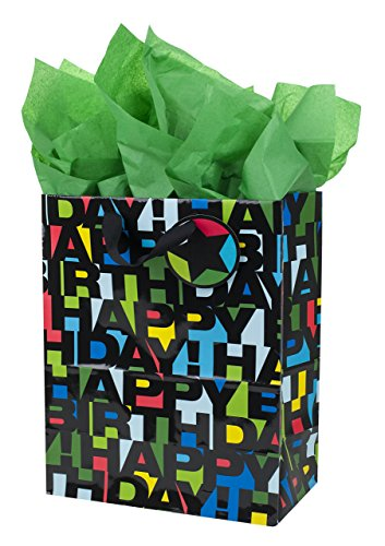 "Hallmark 13"" Large Birthday Gift Bag with Tissue Paper (Happy Birthday in Black Letters) for Kids, Adults, Men, Boys, Husband, Son, Brother and More"