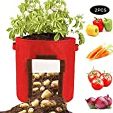 QCUTEP 2/3 Pcs Potato Grow Bags, Round Potato Planter Bags 10 Gallon Felt Plant Container with Flap Access and Handles