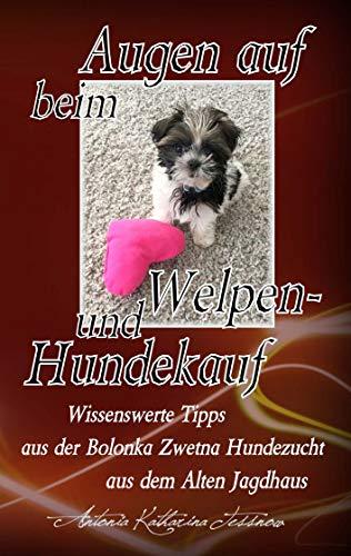 Augen auf beim Welpen- und Hundekauf: Wissenswerte Tipps aus der Bolonka Zwetna...