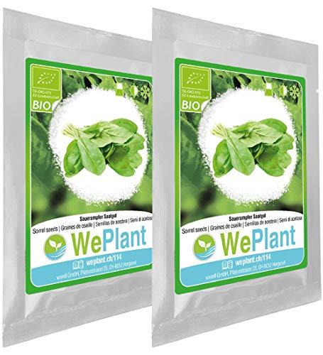 BIO Oseille - Graines de plantes aromatiques/Intérieur & Extérieur