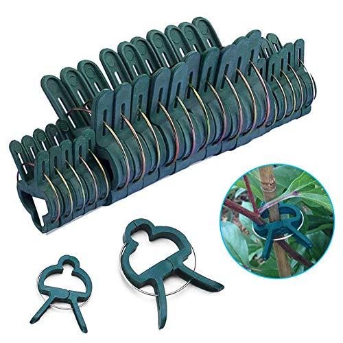Dsaren Lot de 40 Attache Plante Réutilisables Clip Support de Plante Jardin Clip Plastique pour Jardin Vigne Légumes Tomates