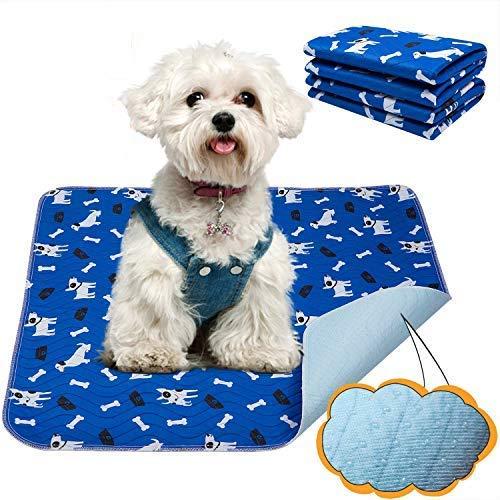 Yangbaga Empapadores Perros, Pañales de Perro Lavable y Reutilizables Empapadores de Entrenamiento para Adecuado para Perros Pequeños y Medianos o Gatos,Pañales para Perros Antideslizante (58 * 39cm)