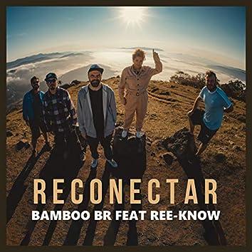 Reconectar