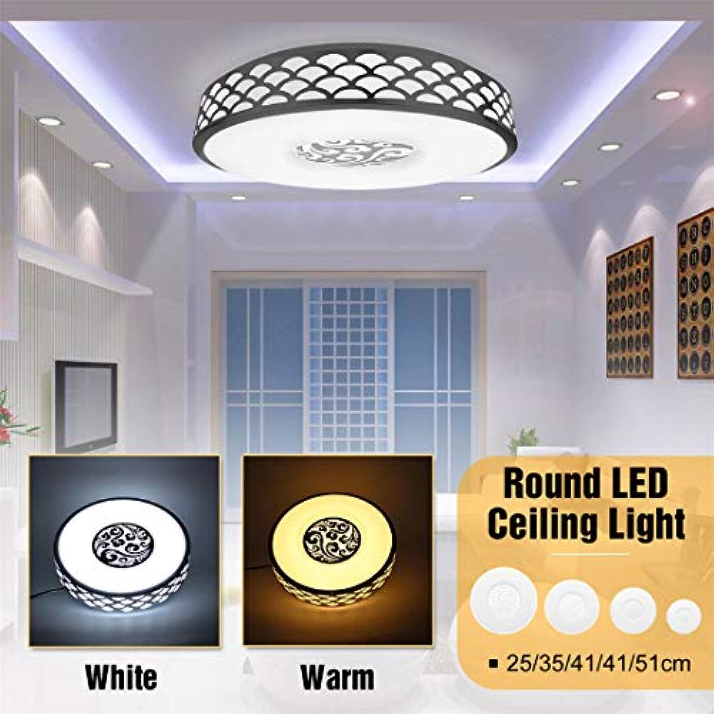 Warmes weies Licht-Unterputz-runde LED-Deckenleuchten-moderne Acryldeckenleuchten für Wohnzimmer-Befestigungen Warm Weiß Light 18W