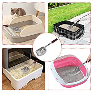 Cat Litter related products for your Cat or Kitten