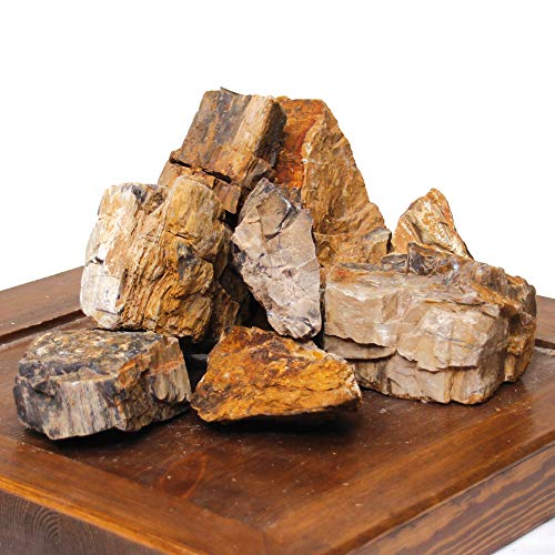 Amtra A8047948 Roccia Petrified S 0,5 K G
