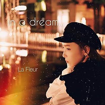 in a dream...