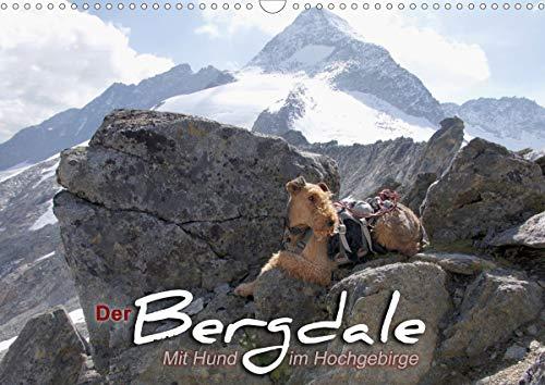 Der Bergdale - mit Hund im Hochgebirge (Wandkalender 2021 DIN A3 quer)