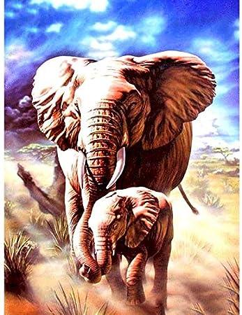 Peinture par num/éros pour adultes /él/éphant photo sur mur Loft huile toile dessin bricolage acrylique coloration d/écoration maison A1 30x30 cm