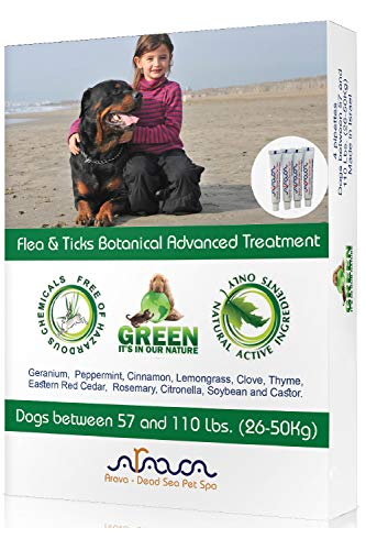 Arava Natural Flea amp Tick Prevention for Dogs amp Cats  4Doses  100% Safe Flea amp Tick Control  Repels Pests with Natural Oils  Safe on Skin and Coats  Enhanced Defense amp Prevention 4 Variations