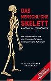Das menschliche Skelett. Mit 10 Schautafeln und drei Riesenpostern zum Ausklappen und Aufhängen by Peter H. Abrahams (2016-01-30) - Peter H. Abrahams;R.M.H. McMinn;R.T. Hutchings;B.M. Logan