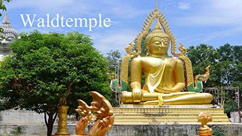 Waldtemple : Fotobuch -Buddha-Statuen: Wunder von Thailand