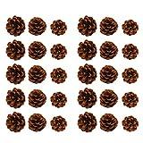 SUPVOX 30 Piezas Conos de Pino Natural seco Real conservado Conos de Pino Ornamento artesanía Accesorio Micro Paisaje árbol de Navidad fotografía Accesorios decoración