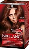 Schwarzkopf Brillance Intensiv-Color-Creme, 867 Mahagoni-Braun Stufe 3, 3er Pack (3 x 143 ml)