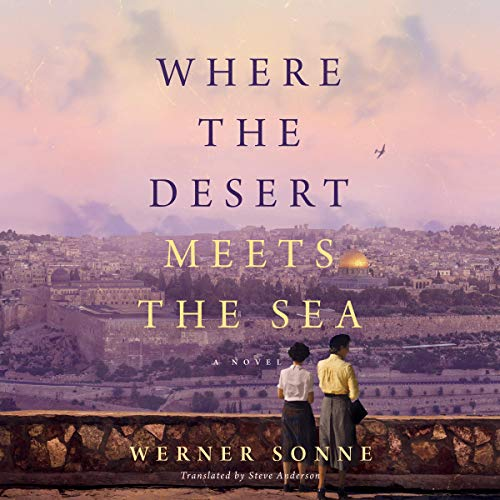 Where the Desert Meets the Sea audiobook cover art