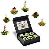 Creano 6 Teeblumen Geschenkbox grüner Tee, in edeler Magnetbox mit Siberberprägung, 6 verschiedene...