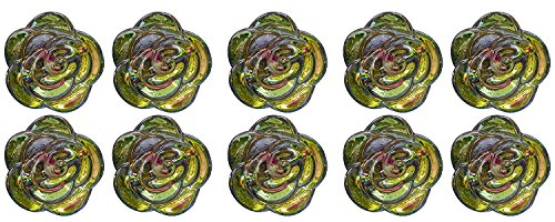 Hiromi House Japan Bouton Acrylique 15 mm Fleur Arc-en-Ciel 10 pièces