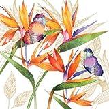 Servilletas de Papel ( Juego de 2 / 40 uds) 3 capas 33x33cm Verano Summer (Flor de Loro)