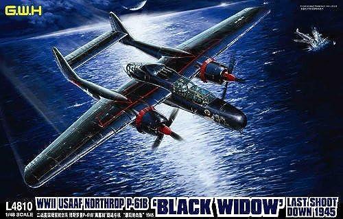 WW II U.S.Army P-61B schwarz Widow [Last Shot Down 1945] (Plastic model)