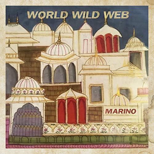 World Wild Web