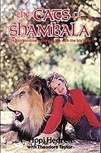 The Cats of Shambala