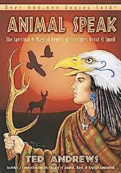 Animal Symbolism of Birds – Divine Lotus Healing