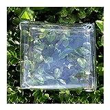 KUAIE Lona De Plástico Transparente con Lona Impermeable De PVC Transparente con Ojales,Hojas De Plantas De Flores A Prueba De (Color : Transparent, Size : 1Mx1.5M)
