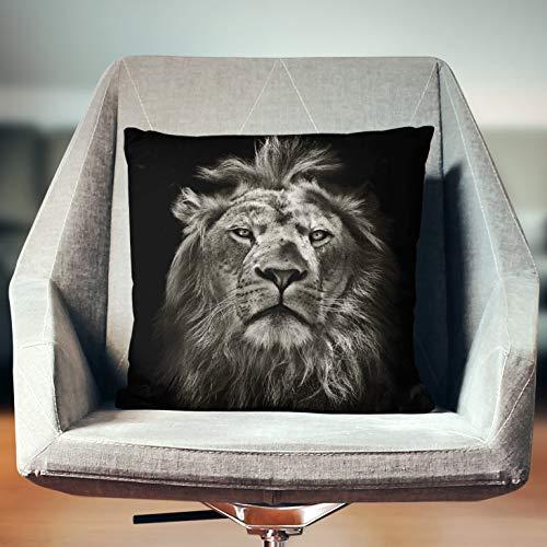 Lplpol Funda de almohada de león, decoración de león, regalos de león, decoración de safari, decoración del hogar del león, regalos africanos, almohada africana, ropa de cama de safari, decoración africana, fundas de almohada para sofá cama de 18 x 18 pulgadas