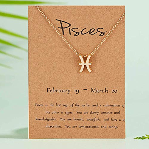 DRTWE Zodiac Necklace,Pisces Female Elegant Star Zodiac Sign 12 Constellation Necklaces Pendant Charm Gold Chain Choker Necklaces For Women Jewelry Cardboard