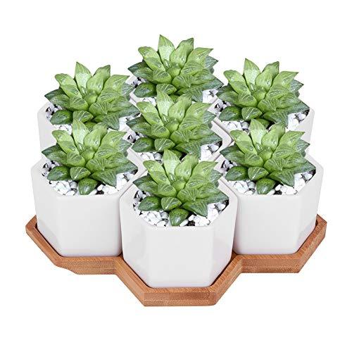 Oumij Sukkulenten Blumentöpfe Keramik Blumentopf mit Bambus Tablett Sukkulenten-Blumentopf Blumenbehälter Bonsai-Behälter für den Innenbereich - 7er-Set, Garten, Desktop-Dekor