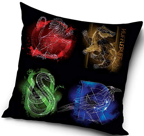 Harry-Potter-Cushion-Cover-40-x-40-cm
