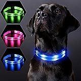 PZRLit Collar Ultra Luminoso Perro , Recargable por con 3 Modos de iluminación Collar LED Perro Luz de Seguridad, Ajustable para Todos Los Perros-Azul,Medio