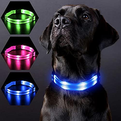 PZRLit Leuchthalsband Hund USB Aufladbar, Einstellbare Länge LED Hundehalsband Leuchtend, Nylon Reflektierend Hundehalsband für Alle Rassen, Sicherheit für Die Nacht-Blau, Groß