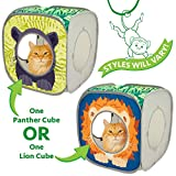 Kitty City Safari Play Cubee, Cat Cube, Play Kennel, Cat Bed, Jungle Cat House, Multicolor, 15 H x15 W inches