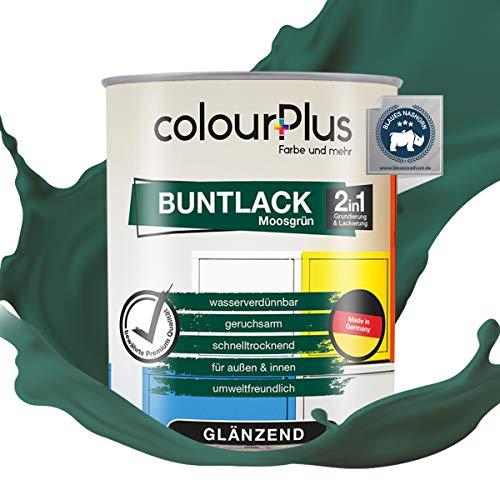 colourPlus® 2in1 Buntlack (750ml, RAL 6005 Moosgrün) glänzender Acryllack - Lack für Kinderspielzeug - Farbe für Holz - Holzfarbe Innen - Made in Germany