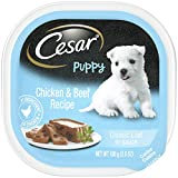 Cesar Gourmet Puppy Wet Dog Food