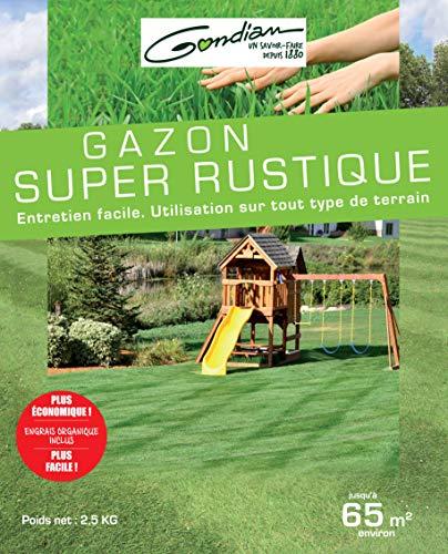 Gazon Super Rustique 2.5kg G
