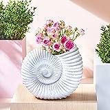 Muschel Blumentopf im Vintage Stil zum Bepflanzen - Pflanzgefäß, Blumenkübel für den Garten - Übertopf groß, XL