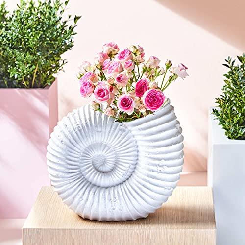Muschel Blumentopf im Vintage Stil zum...