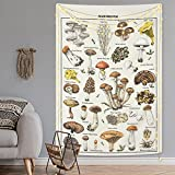 Mushroom Tapestry Vintage Tapestry Illustrative Reference Chart Tapestry Fungus Tapestry Colorful Vertical Tapestry Wall Hanging for Room (59.1 x 59.1 inches)